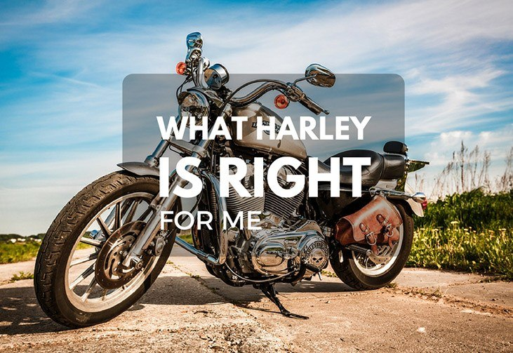 What Harley is Right for me